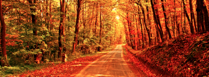 Fall Autumn Road Facebook Covers